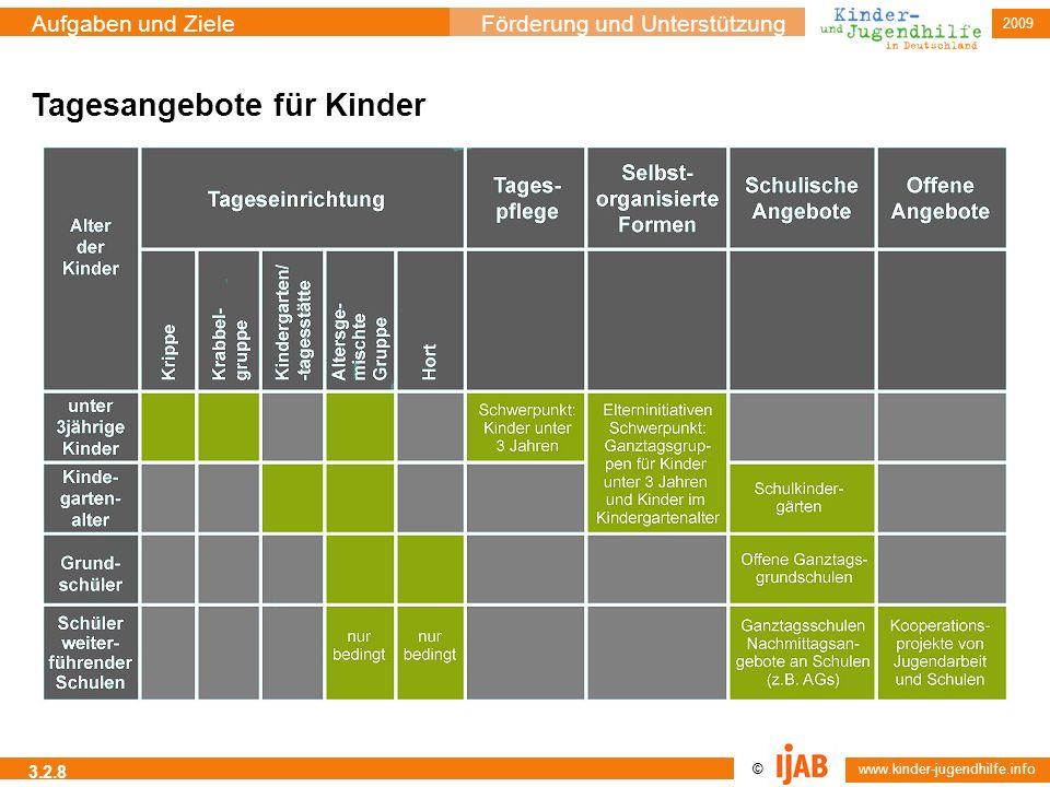 © www.kinder-jugendhilfe.info Aufgaben und ZieleFörderung und Unterstützung 2009 3.2.8 Tagesangebote für Kinder
