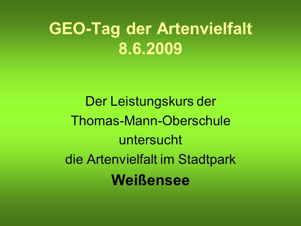 GEO-Tag der Artenvielfalt 8.6.2009 Der Leistungskurs der Thomas-Mann-Oberschule untersucht die Artenvielfalt im Stadtpark Weißensee