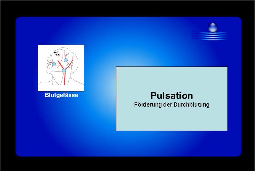 Blutgefässe Pulsation Förderung der Durchblutung