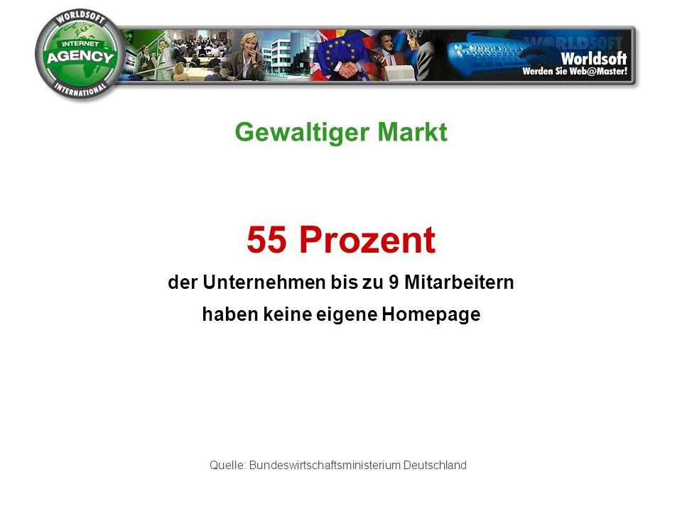 55 Prozent der Unternehmen bis zu 9 Mitarbeitern haben keine eigene Homepage Quelle: Bundeswirtschaftsministerium Deutschland Gewaltiger Markt