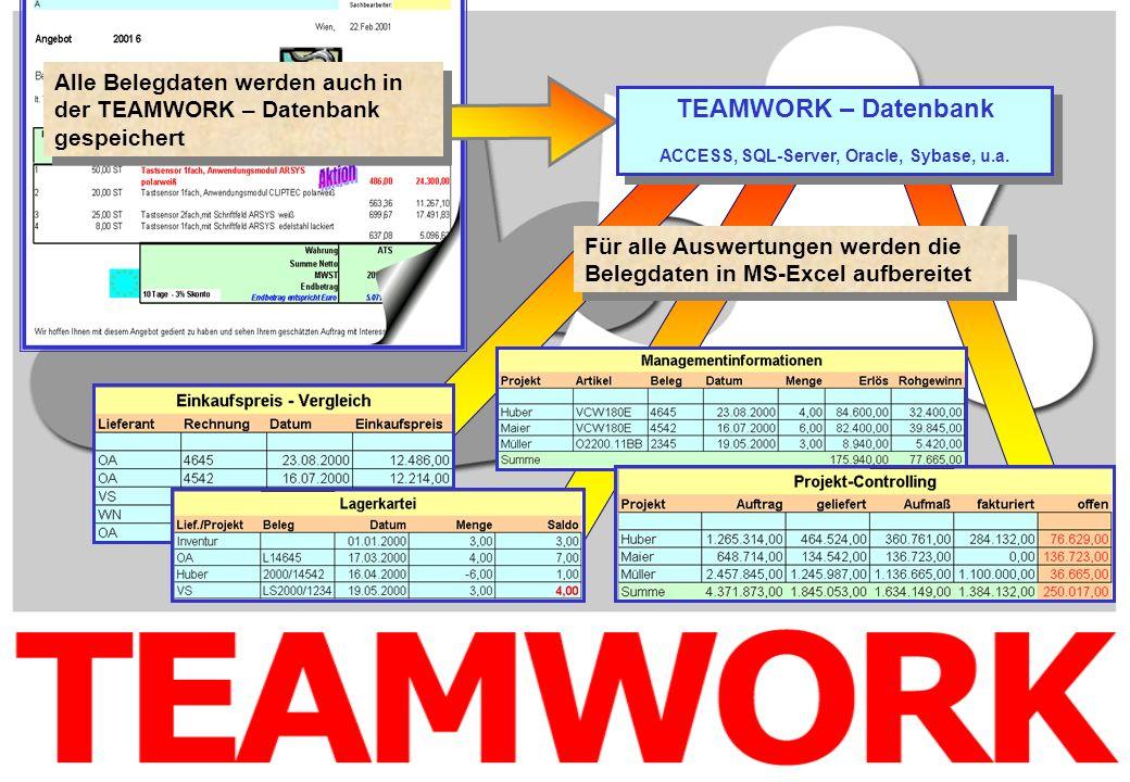 Alle Belegdaten werden auch in der TEAMWORK – Datenbank gespeichert Für alle Auswertungen werden die Belegdaten in MS-Excel aufbereitet TEAMWORK – Dat