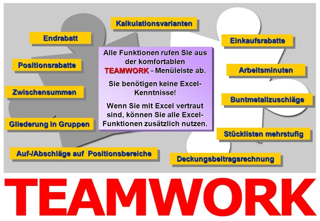 Alle Funktionen rufen Sie aus der komfortablen TEAMWORK - Menüleiste ab. Sie benötigen keine Excel- Kenntnisse! Wenn Sie mit Excel vertraut sind, könn