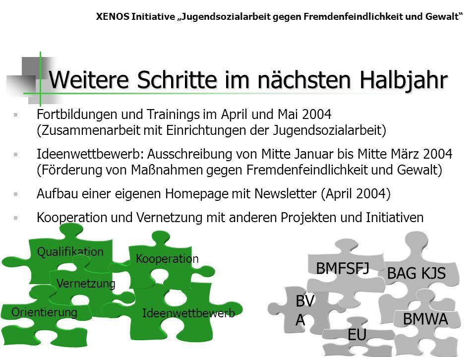 Weitere Schritte im nächsten Halbjahr Qualifikation BV A BAG KJS BMFSFJ Vernetzung Orientierung EU BMWA Ideenwettbewerb XENOS Initiative Jugendsoziala