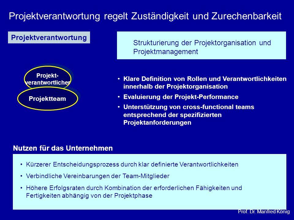 Prof. Dr. Manfred König Projektverantwortung regelt Zuständigkeit und Zurechenbarkeit Projekt- verantwortlicher Projekt- verantwortlicher Projektteam
