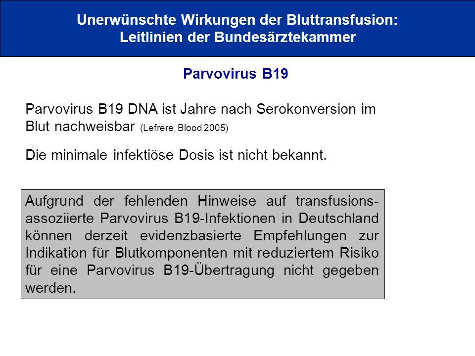 Unerwünschte Wirkungen der Bluttransfusion: Leitlinien der Bundesärztekammer Parvovirus B19 Parvovirus B19 DNA ist Jahre nach Serokonversion im Blut n
