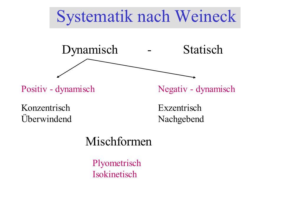 Systematik nach Weineck Dynamisch - Statisch Positiv - dynamischNegativ - dynamisch Konzentrisch Überwindend Exzentrisch Nachgebend Mischformen Plyome