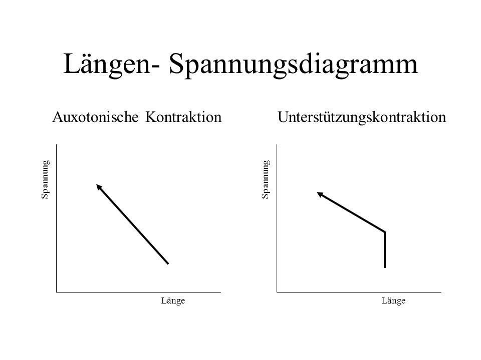 Längen- Spannungsdiagramm Unterstützungskontraktion Länge Spannung Auxotonische Kontraktion Länge Spannung