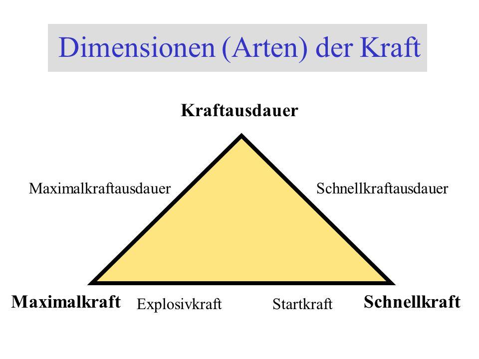 Dimensionen (Arten) der Kraft Kraftausdauer SchnellkraftMaximalkraft StartkraftExplosivkraft MaximalkraftausdauerSchnellkraftausdauer