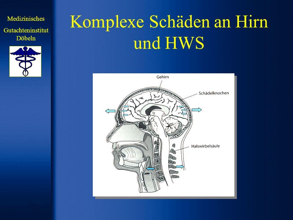 Komplexe Schäden an Hirn und HWS Medizinisches Gutachteninstitut Döbeln