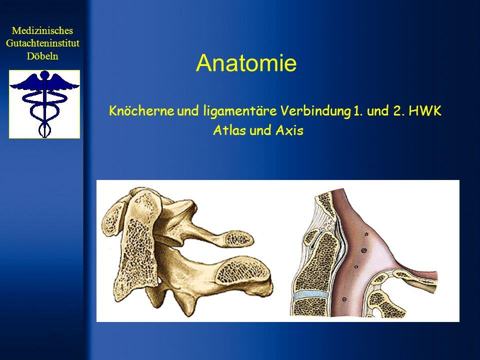 Anatomie Knöcherne und ligamentäre Verbindung 1. und 2. HWK Atlas und Axis Medizinisches Gutachteninstitut Döbeln