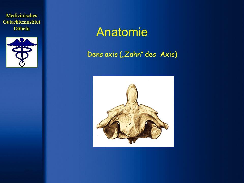 Anatomie 3.-7. Halswirbelkörper Medizinisches Gutachteninstitut Döbeln