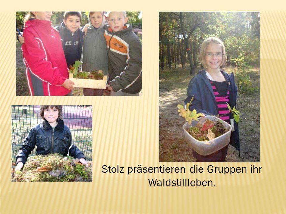 Stolz präsentieren die Gruppen ihr Waldstillleben.