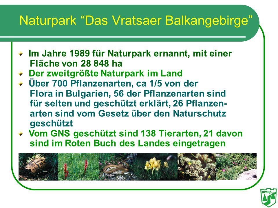 Naturpark Das Vratsaer Balkangebirge Im Jahre 1989 für Naturpark ernannt, mit einer Fläche von 28 848 ha Der zweitgrößte Naturpark im Land Über 700 Pf