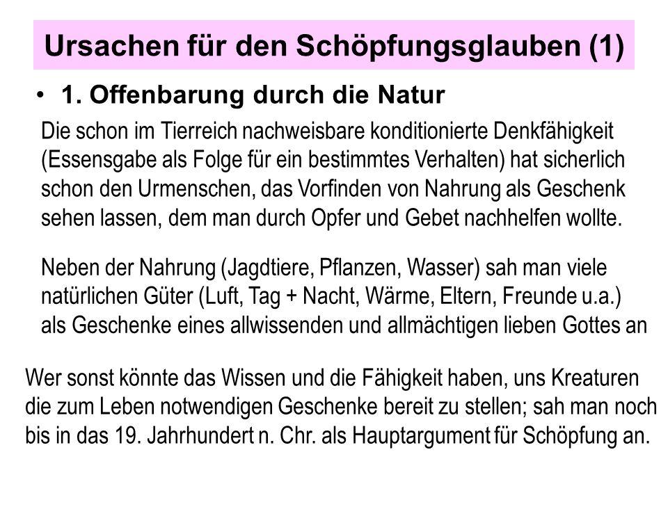 Ursachen für den Schöpfungsglauben (1) 1. Offenbarung durch die Natur Die schon im Tierreich nachweisbare konditionierte Denkfähigkeit (Essensgabe als