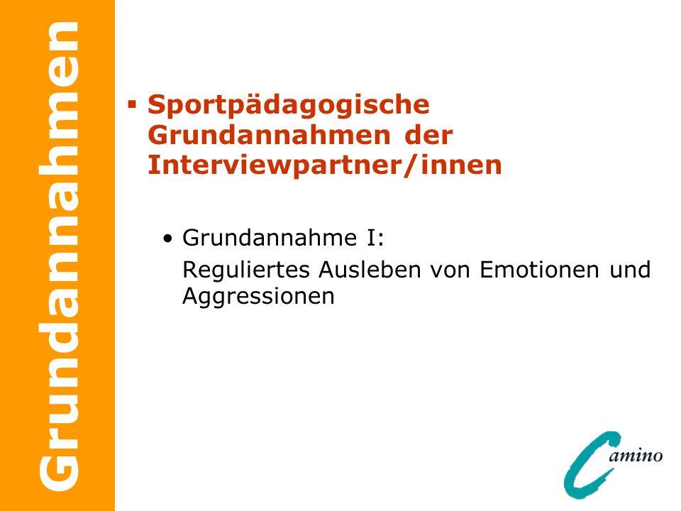 Grundannahmen Sportpädagogische Grundannahmen der Interviewpartner/innen Grundannahme I: Reguliertes Ausleben von Emotionen und Aggressionen