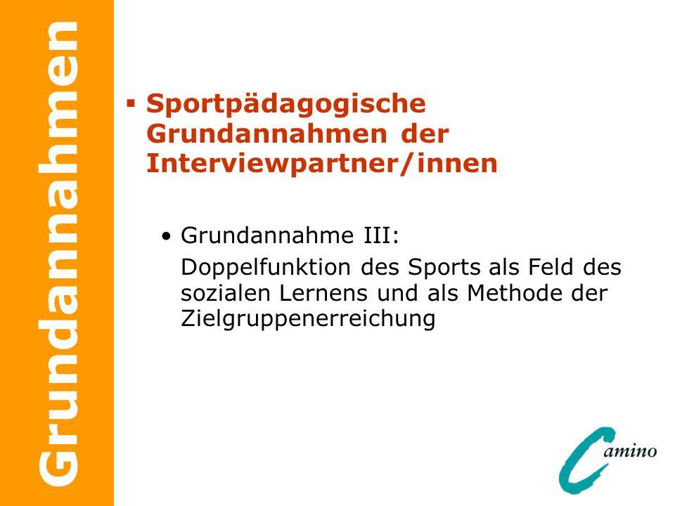 Grundannahmen Sportpädagogische Grundannahmen der Interviewpartner/innen Grundannahme III: Doppelfunktion des Sports als Feld des sozialen Lernens und