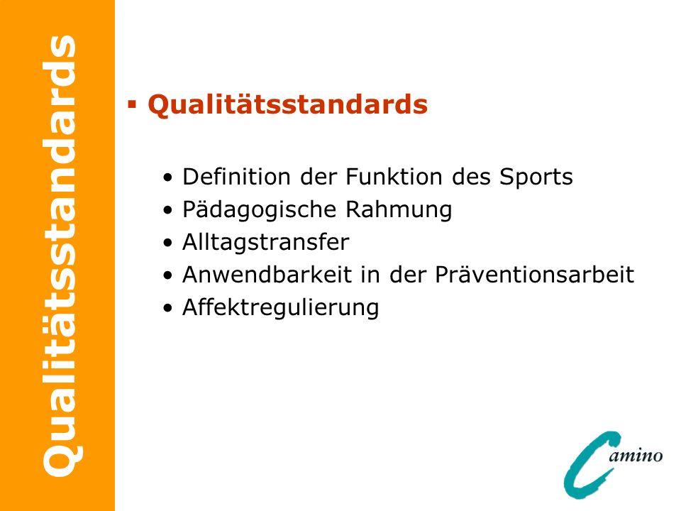 Qualitätsstandards Definition der Funktion des Sports Pädagogische Rahmung Alltagstransfer Anwendbarkeit in der Präventionsarbeit Affektregulierung