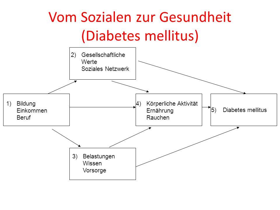 1)Bildung Einkommen Beruf 3)Belastungen Wissen Vorsorge 5) Diabetes mellitus 4)Körperliche Aktivität Ernährung Rauchen Vom Sozialen zur Gesundheit (Di
