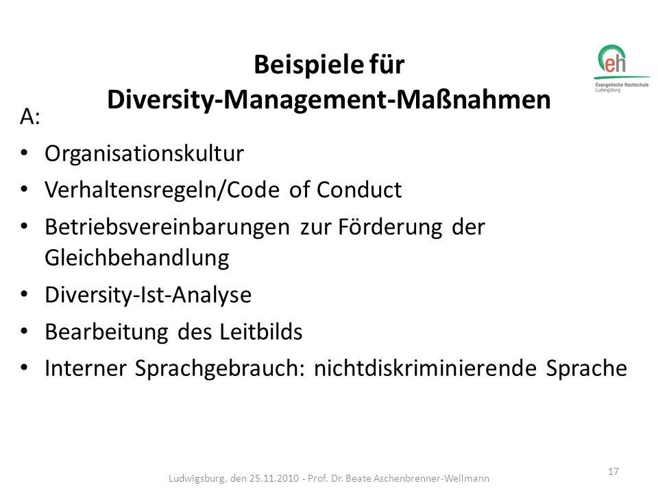 B: Personlentwicklung: Bildung heterogener Teams MitarbeiterInnen-Netzwerke MentorInnen-Programme Antidiskriminierungs- und Diversitytrainings Ludwigsburg, den 25.11.2010 - Prof.