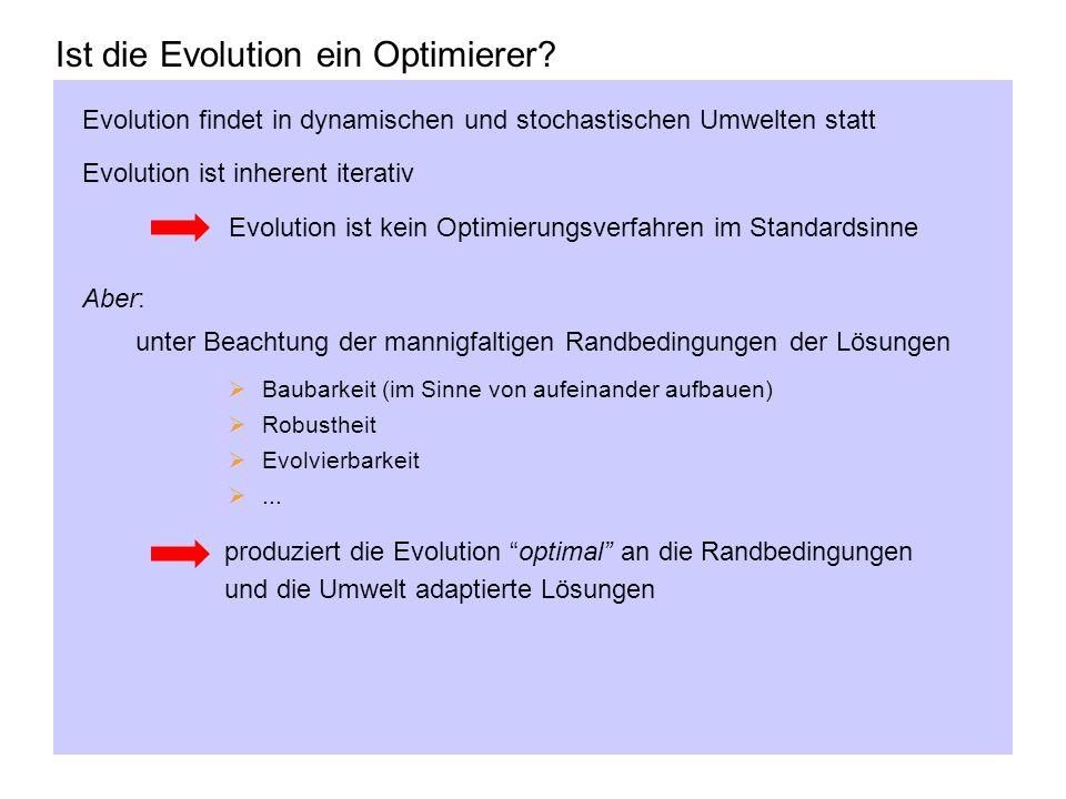 Ist die Evolution ein Optimierer? Evolution findet in dynamischen und stochastischen Umwelten statt Evolution ist inherent iterativ Evolution ist kein