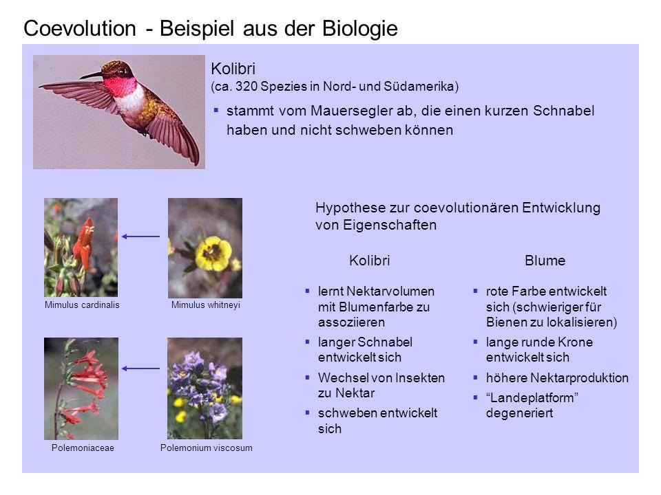Coevolution - Beispiel aus der Biologie Polemoniaceae Mimulus cardinalis Polemonium viscosum Mimulus whitneyi Kolibri (ca. 320 Spezies in Nord- und Sü
