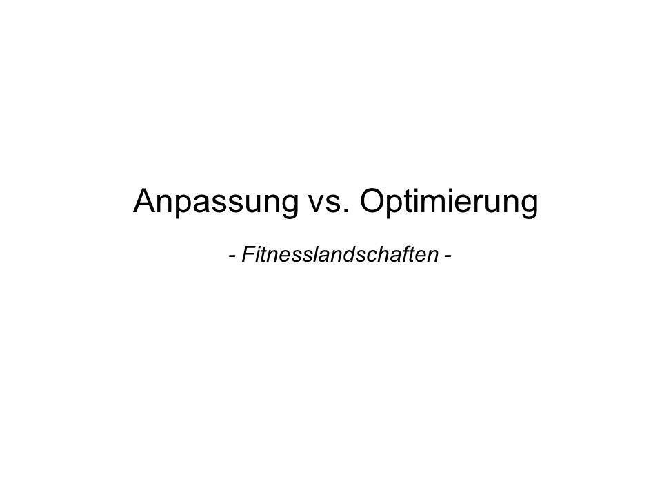 Anpassung vs. Optimierung - Fitnesslandschaften -
