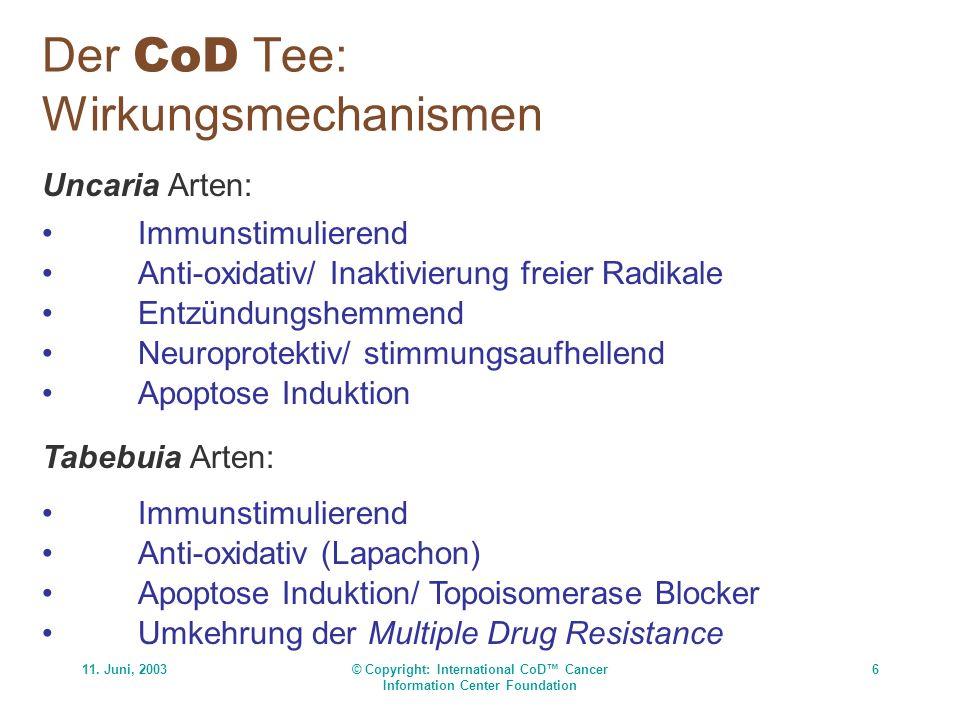 11. Juni, 2003© Copyright: International CoD Cancer Information Center Foundation 6 Der CoD Tee: Wirkungsmechanismen Uncaria Arten: Immunstimulierend