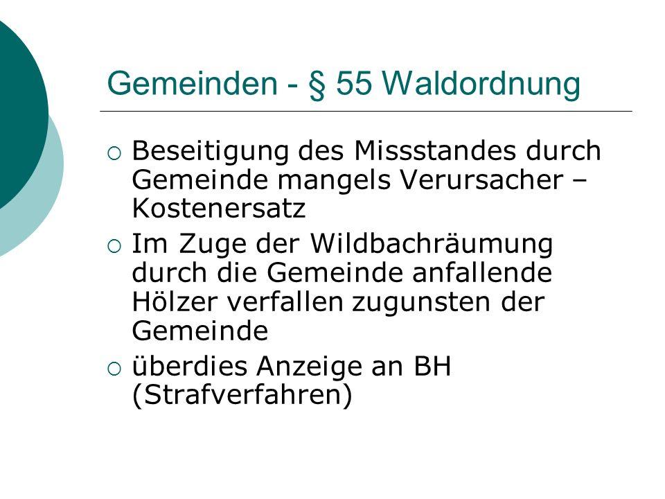 Gemeinden - § 55 Waldordnung Beseitigung des Missstandes durch Gemeinde mangels Verursacher – Kostenersatz Im Zuge der Wildbachräumung durch die Gemei