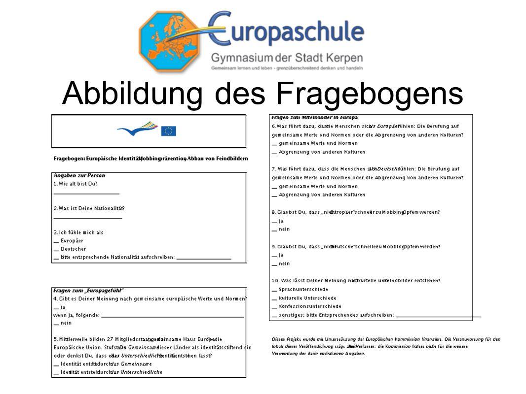 Abbildung des Fragebogens