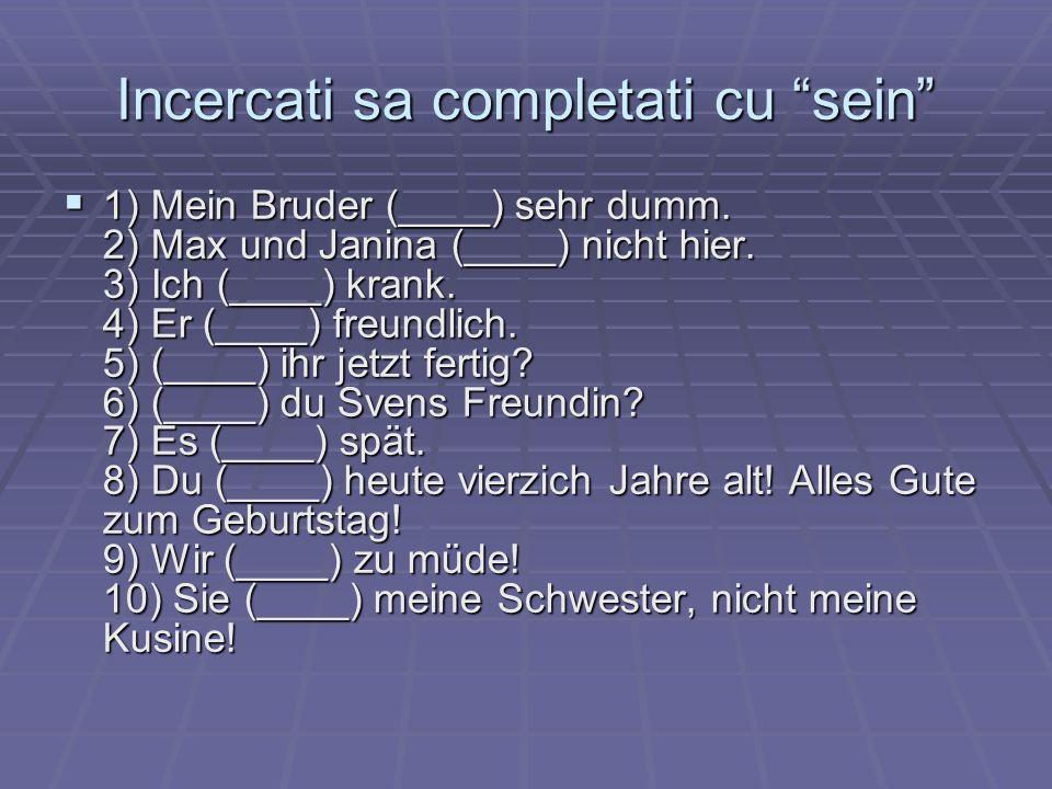 Incercati sa completati cu sein 1) Mein Bruder (____) sehr dumm. 2) Max und Janina (____) nicht hier. 3) Ich (____) krank. 4) Er (____) freundlich. 5)