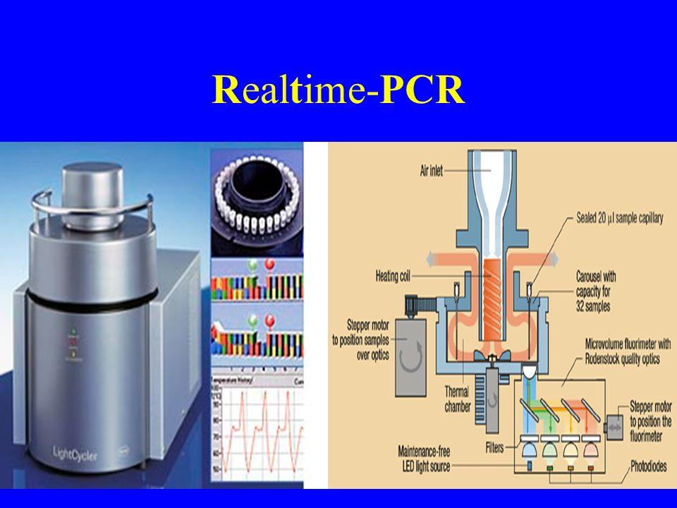 Realtime-PCR