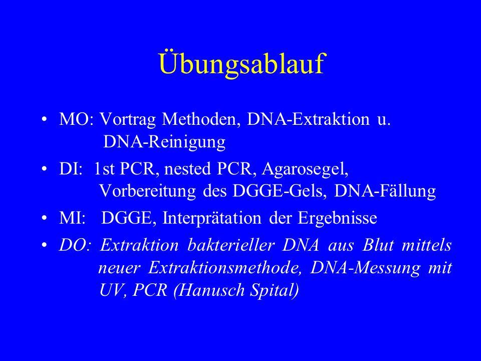 Übungsablauf MO: Vortrag Methoden, DNA-Extraktion u. DNA-Reinigung DI: 1st PCR, nested PCR, Agarosegel, Vorbereitung des DGGE-Gels, DNA-Fällung MI: DG