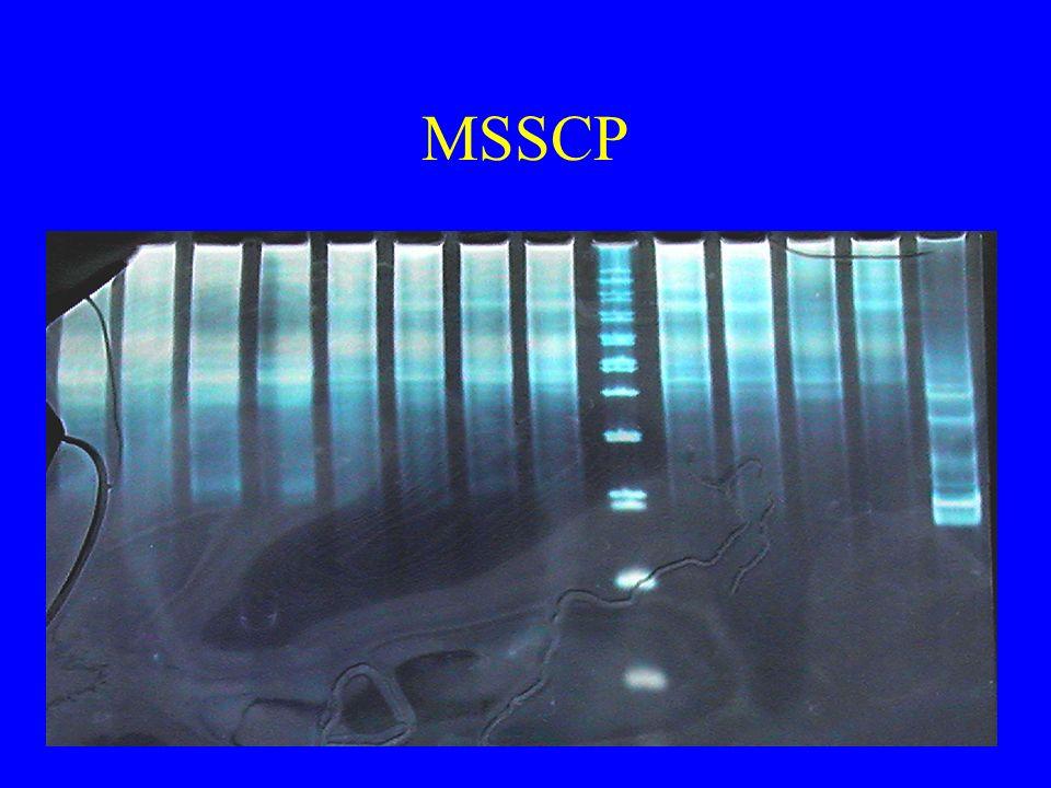 MSSCP
