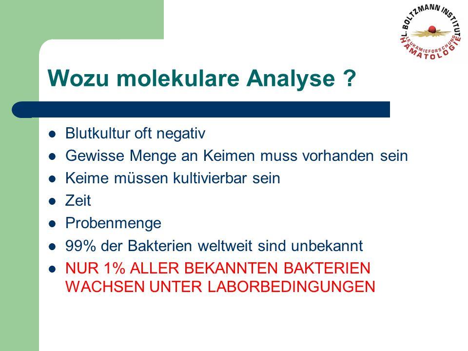 Wozu molekulare Analyse ? Blutkultur oft negativ Gewisse Menge an Keimen muss vorhanden sein Keime müssen kultivierbar sein Zeit Probenmenge 99% der B