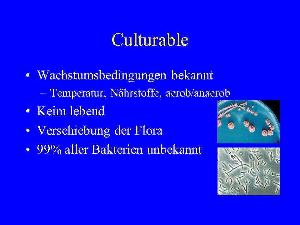 Culturable Wachstumsbedingungen bekannt –Temperatur, Nährstoffe, aerob/anaerob Keim lebend Verschiebung der Flora 99% aller Bakterien unbekannt