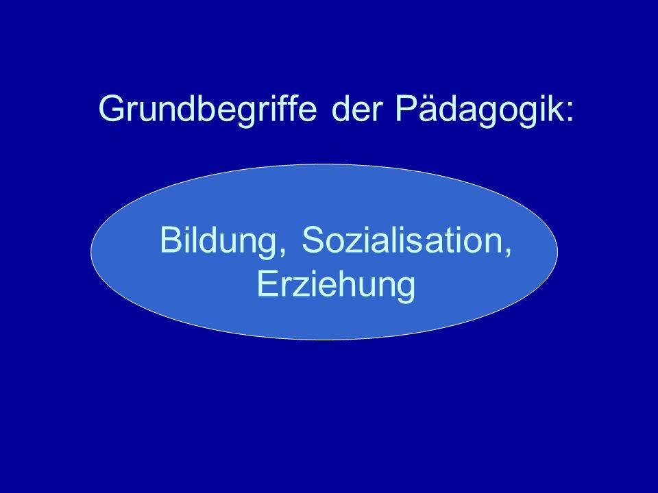 Grundbegriffe Pädagogik Bildung Erziehung Sozialisation Entwicklung Unterricht Lernen