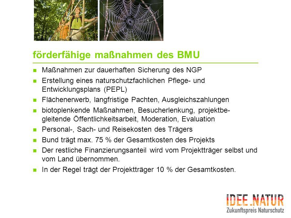 förderfähige maßnahmen des BMU Maßnahmen zur dauerhaften Sicherung des NGP Erstellung eines naturschutzfachlichen Pflege- und Entwicklungsplans (PEPL)