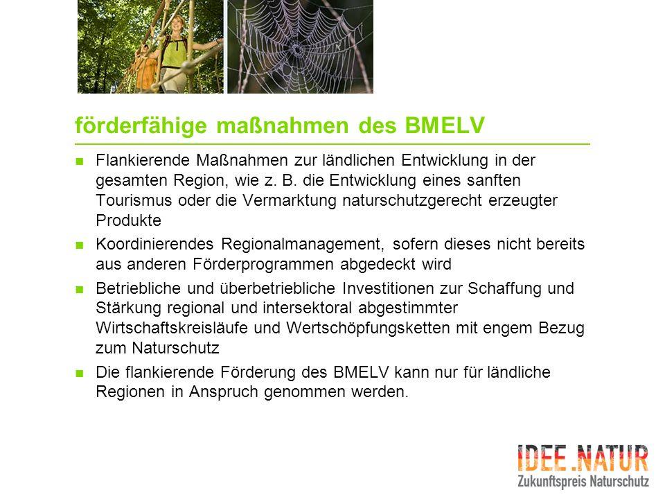 förderfähige maßnahmen des BMELV Flankierende Maßnahmen zur ländlichen Entwicklung in der gesamten Region, wie z. B. die Entwicklung eines sanften Tou
