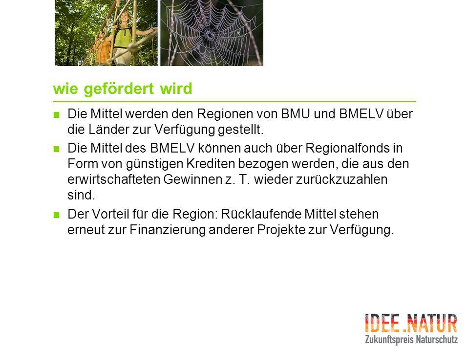 wie gefördert wird Die Mittel werden den Regionen von BMU und BMELV über die Länder zur Verfügung gestellt. Die Mittel des BMELV können auch über Regi