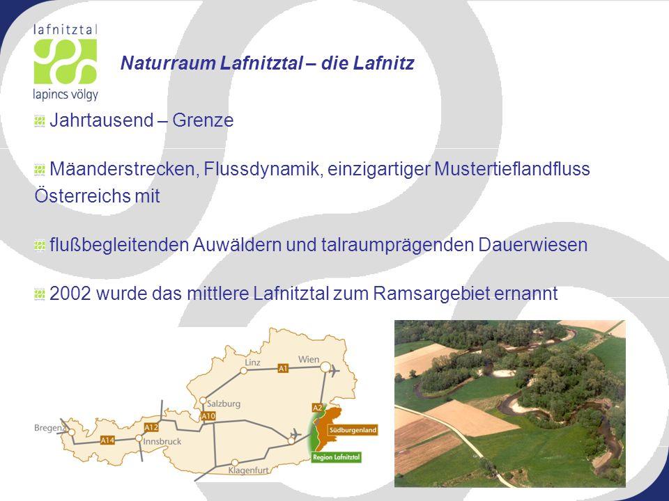 Jahrtausend – Grenze Mäanderstrecken, Flussdynamik, einzigartiger Mustertieflandfluss Österreichs mit flußbegleitenden Auwäldern und talraumprägenden