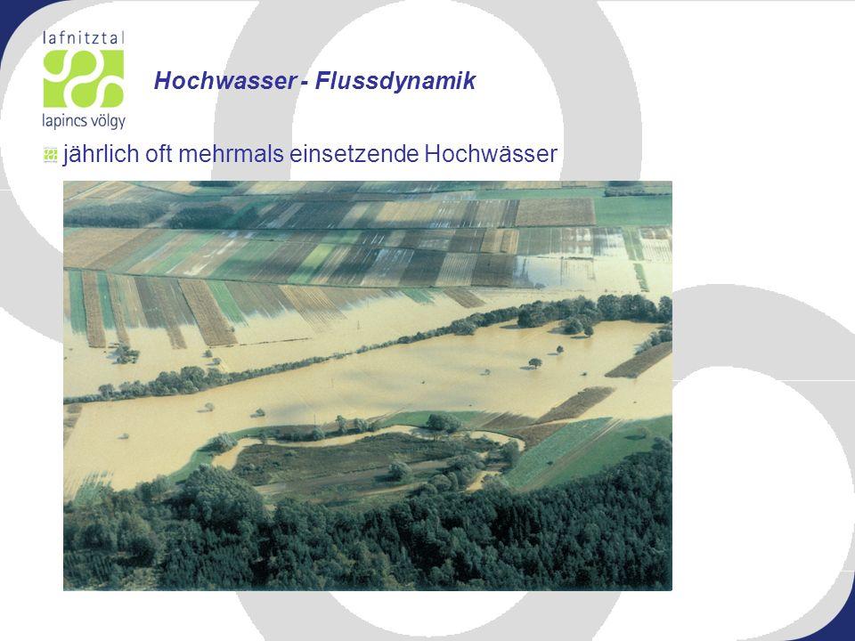 jährlich oft mehrmals einsetzende Hochwässer Hochwasser - Flussdynamik