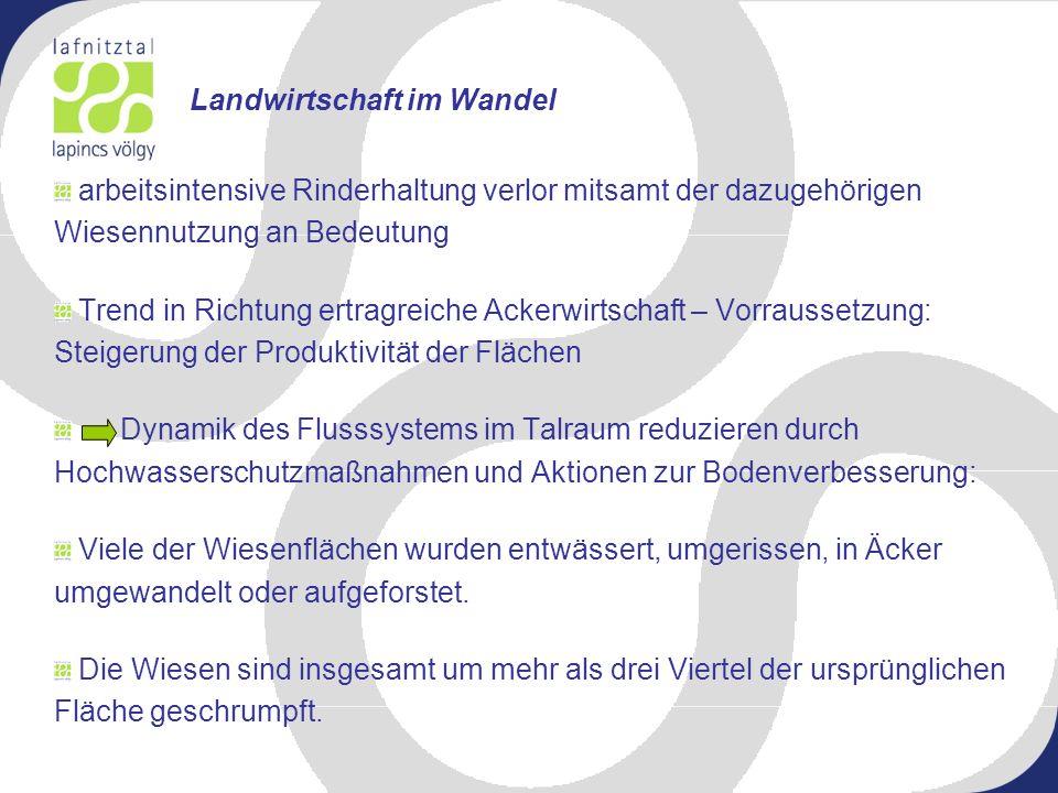 Bedeutung der Anlage für die Gemeinde Markt Allhau Die Gemeinde hat ca.