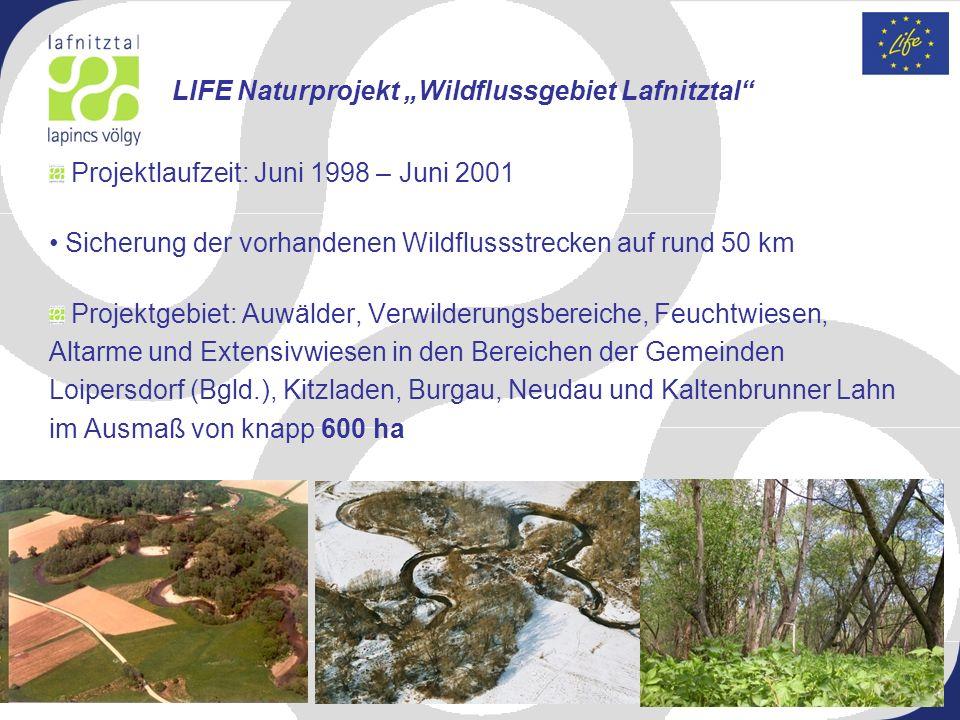 Projektlaufzeit: Juni 1998 – Juni 2001 Sicherung der vorhandenen Wildflussstrecken auf rund 50 km Projektgebiet: Auwälder, Verwilderungsbereiche, Feuc