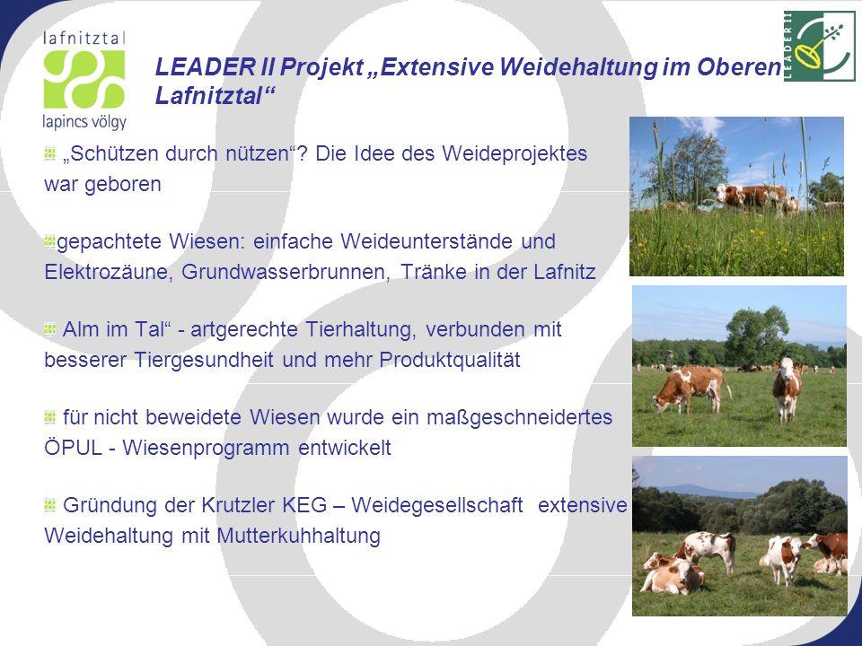 LEADER II Projekt Ramsar Informationszentrum Lafnitztal LEADER Plus Projekt Entwicklung eines naturtouristischen Angebots im Ramsar – Gebiet Lafnitztal LIFE Natur Projekt Lafnitz – Lebensraumvernetzung an einem alpin – pannonischen Fluss Weiter Projekte im Lafnitztal