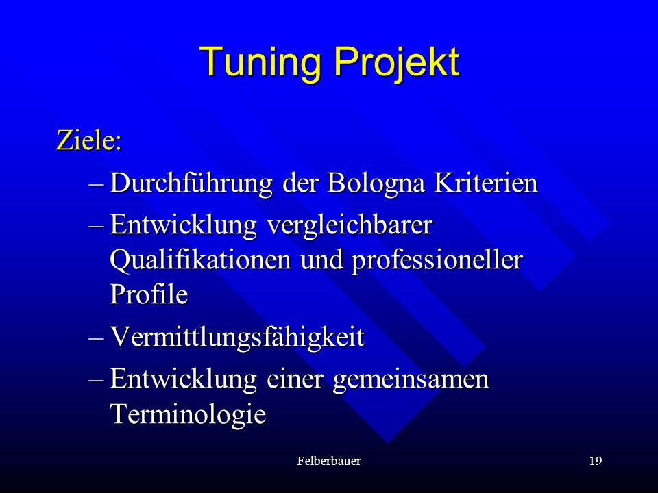 Felberbauer19 Tuning Projekt Ziele: –Durchführung der Bologna Kriterien –Entwicklung vergleichbarer Qualifikationen und professioneller Profile –Vermi