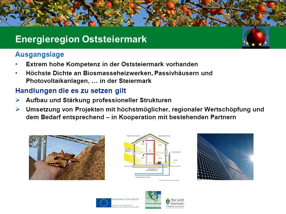 Ausgangslage Extrem hohe Kompetenz in der Oststeiermark vorhanden Höchste Dichte an Biosmasseheizwerken, Passivhäusern und Photovoltaikanlagen, … in d