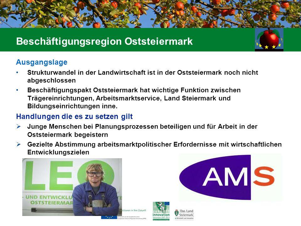 Ausgangslage Strukturwandel in der Landwirtschaft ist in der Oststeiermark noch nicht abgeschlossen Beschäftigungspakt Oststeiermark hat wichtige Funk