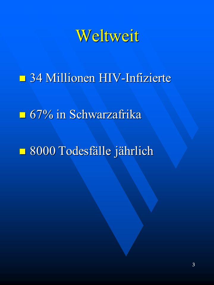 Weltweit 34 Millionen HIV-Infizierte 34 Millionen HIV-Infizierte 67% in Schwarzafrika 67% in Schwarzafrika 8000 Todesfälle jährlich 8000 Todesfälle jä