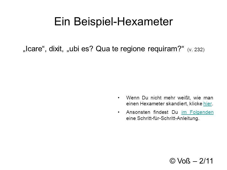 © Voß – 2/11 Ein Beispiel-Hexameter Icare, dixit, ubi es.