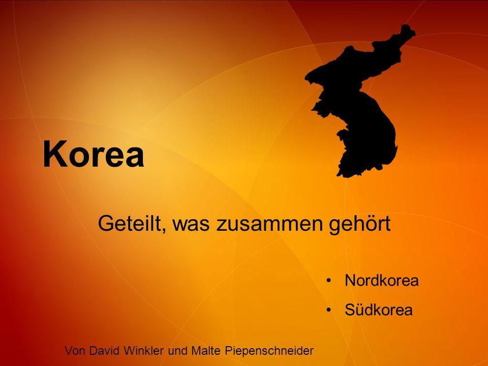Inhalt Gemeinsame Geschichte –Geschichte bis 1890 –Japanische Herrschaft Teilung Koreas –Korea Krieg Entwicklungen der Länder Konflikte zwischen Nord und Süd Zivilbevölkerung Nordkoreas Atomprogramm